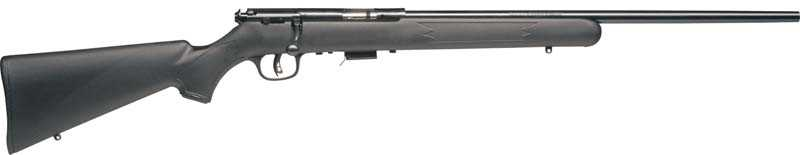 Savage Arms 17 CAL. - Save $40